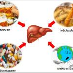 Bệnh gan nhiễm độc