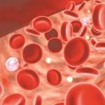 Thiếu máu ở bệnh thận