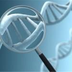 Bệnh thận có di truyền không ?